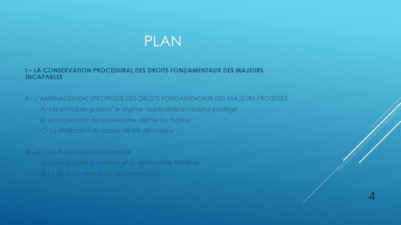 plan I – LA CONSERVATION PROCEDURAL DES DROITS FONDAMENTAUX DES MAJEURS INCAPABLES.
