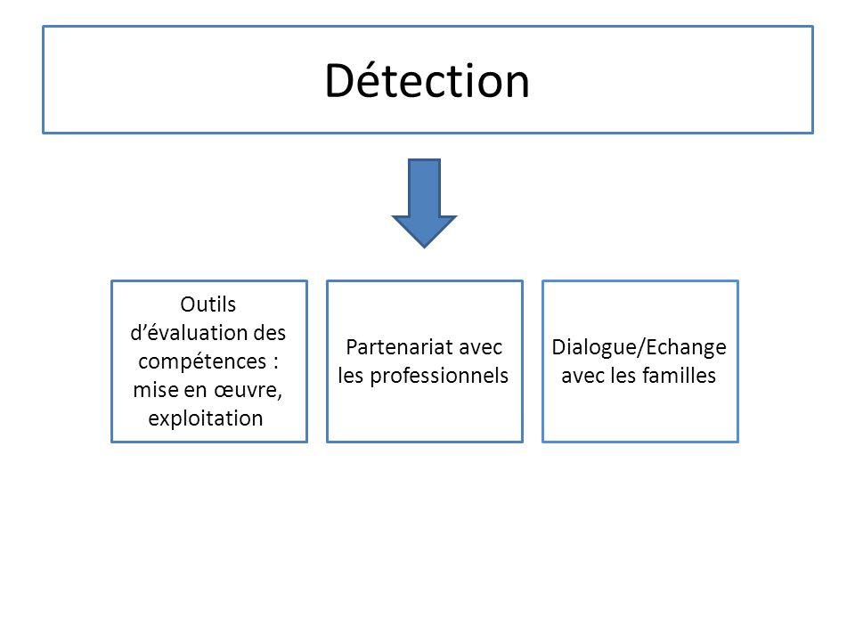 Détection Outils d'évaluation des compétences : mise en œuvre, exploitation Partenariat avec les professionnels.