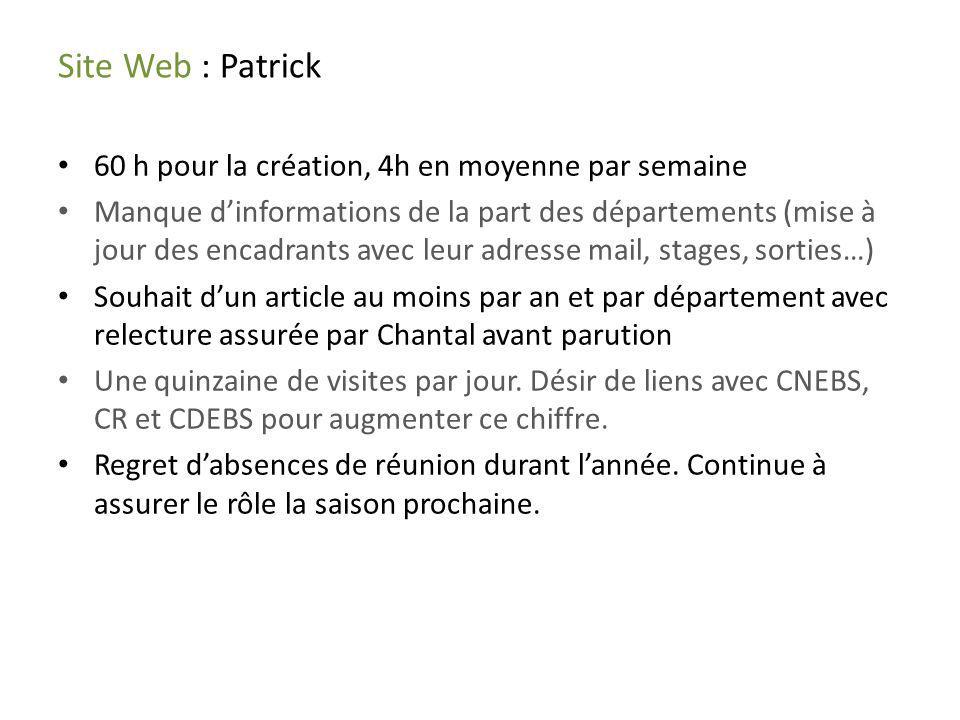 Site Web : Patrick 60 h pour la création, 4h en moyenne par semaine