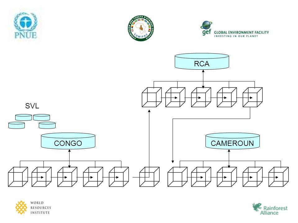 RCA CONGO SVL CAMEROUN
