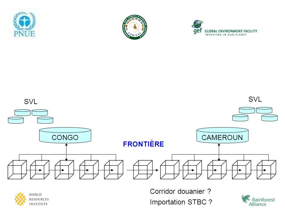 SVL CONGO SVL CAMEROUN FRONTIÈRE Corridor douanier Importation STBC