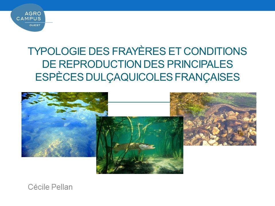 Typologie des frayères et conditions de reproduction des principales espèces dulçaquicoles françaises