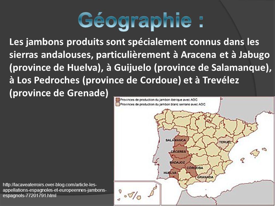 Géographie :