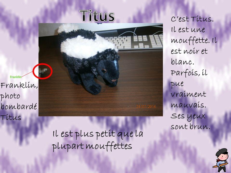 Titus Il est plus petit que la plupart mouffettes