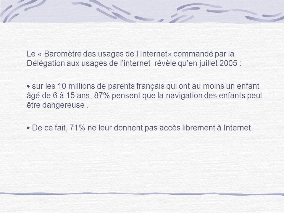 Le « Baromètre des usages de l'Internet» commandé par la Délégation aux usages de l'internet révèle qu'en juillet 2005 :
