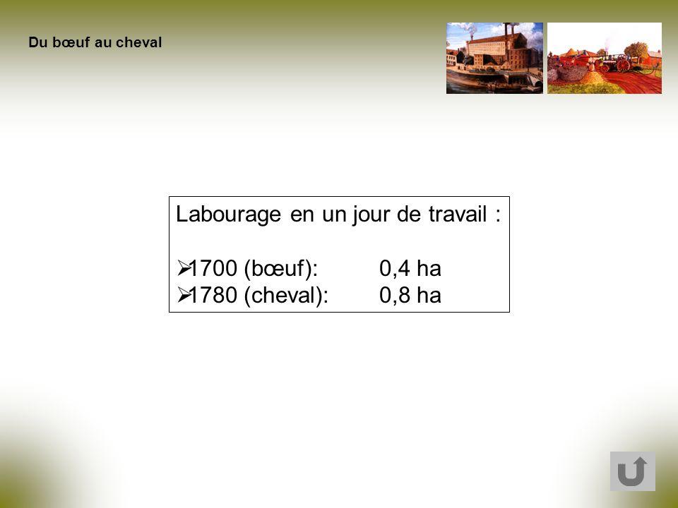 Labourage en un jour de travail : 1700 (bœuf): 0,4 ha