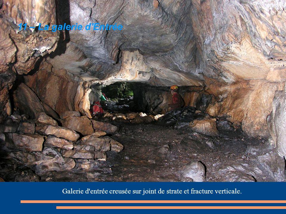 Galerie d entrée creusée sur joint de strate et fracture verticale.