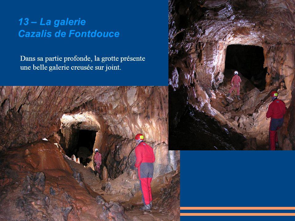 13 – La galerie Cazalis de Fontdouce