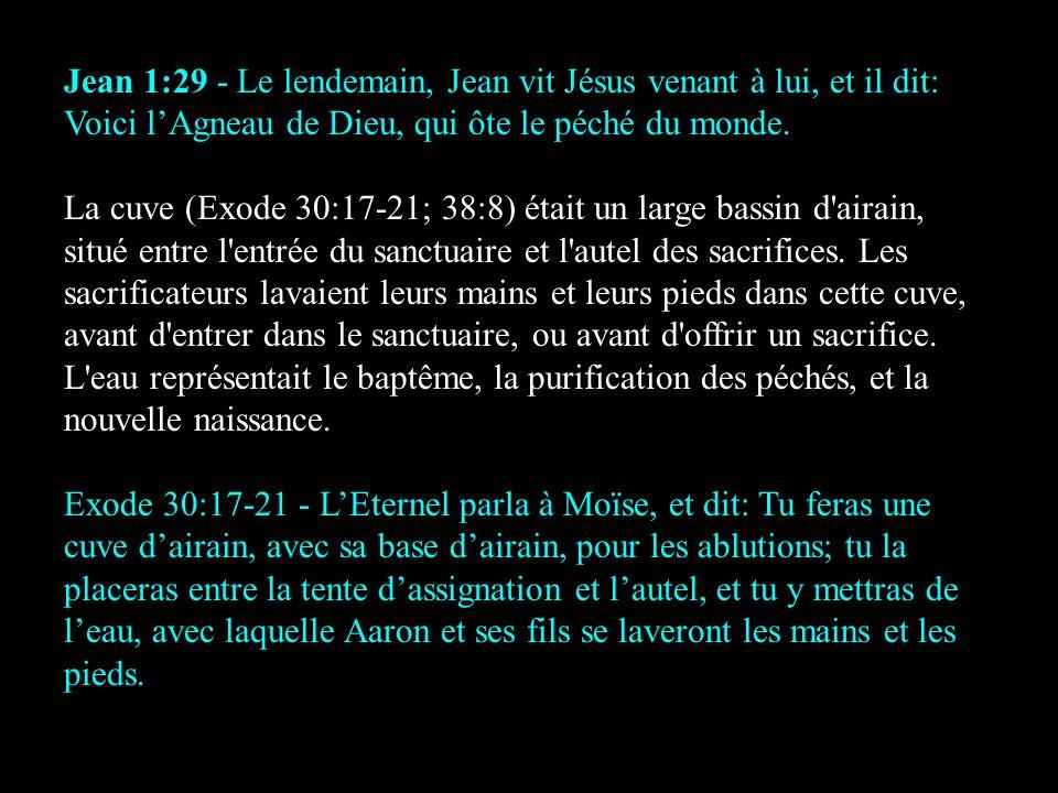 Jean 1:29 - Le lendemain, Jean vit Jésus venant à lui, et il dit: Voici l'Agneau de Dieu, qui ôte le péché du monde.