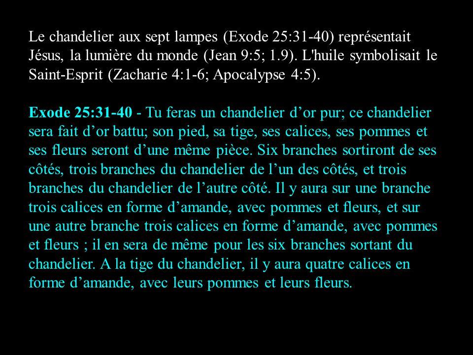 Le chandelier aux sept lampes (Exode 25:31-40) représentait Jésus, la lumière du monde (Jean 9:5; 1.9). L huile symbolisait le Saint-Esprit (Zacharie 4:1-6; Apocalypse 4:5).