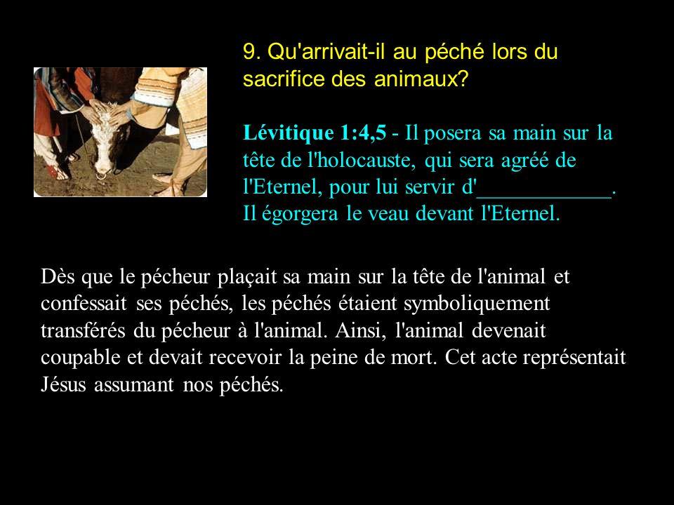 9. Qu arrivait-il au péché lors du sacrifice des animaux