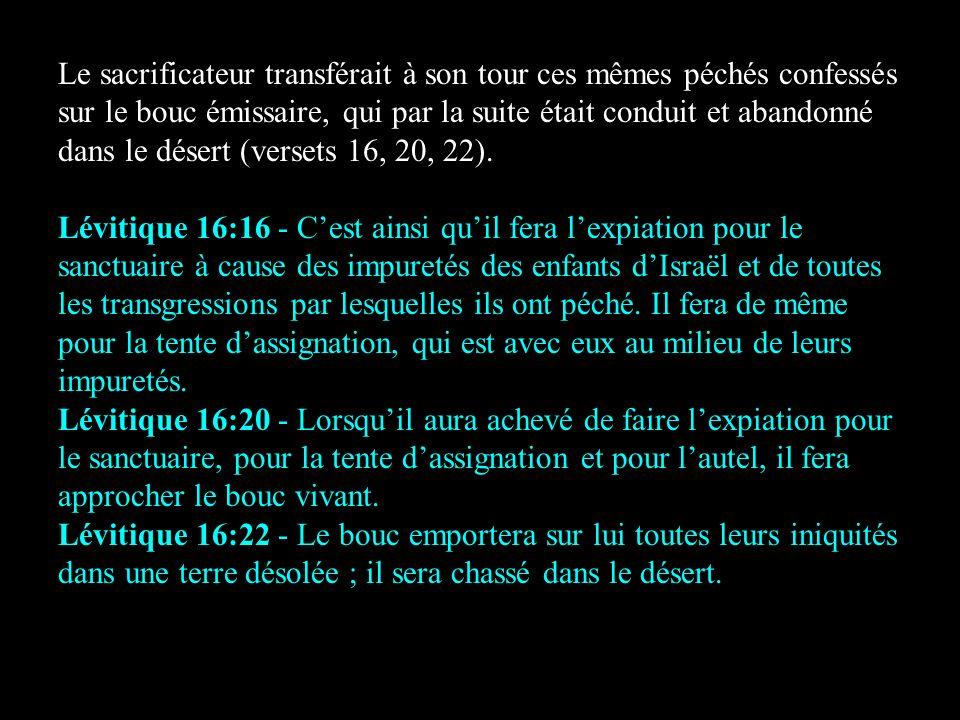 Le sacrificateur transférait à son tour ces mêmes péchés confessés sur le bouc émissaire, qui par la suite était conduit et abandonné dans le désert (versets 16, 20, 22).
