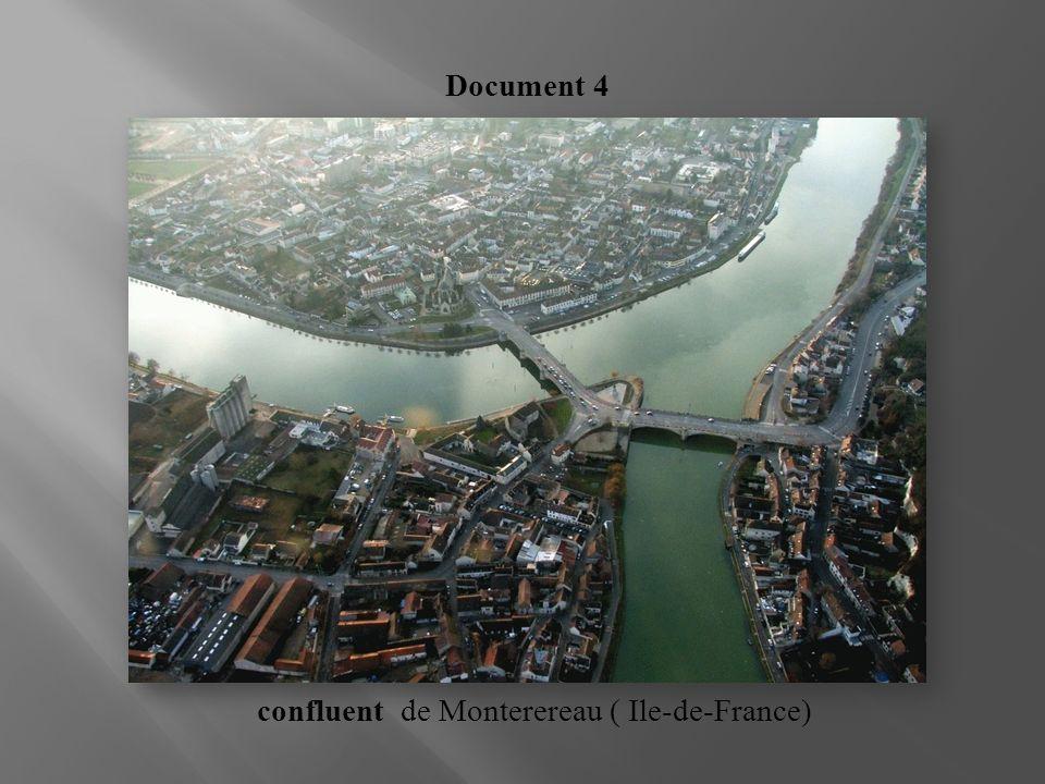 confluent de Monterereau ( Ile-de-France)