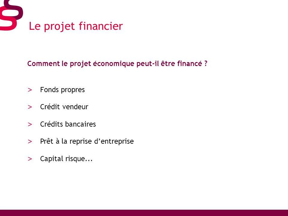 Le projet financier Comment le projet économique peut-il être financé Fonds propres. Crédit vendeur.