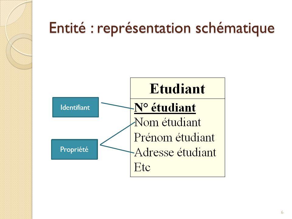 Entité : représentation schématique