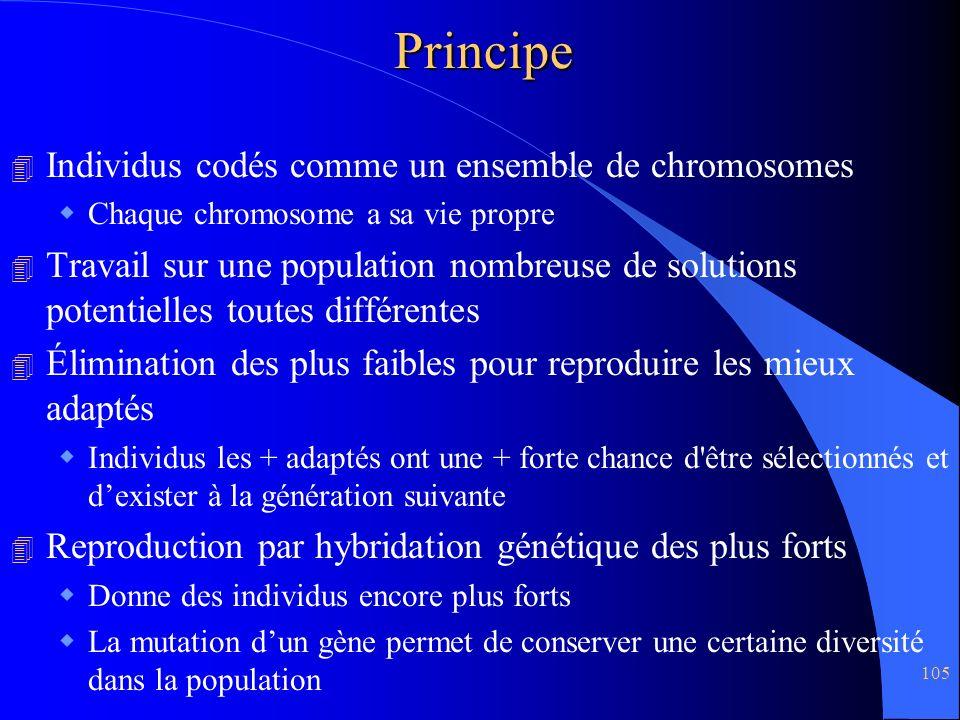 Principe Individus codés comme un ensemble de chromosomes