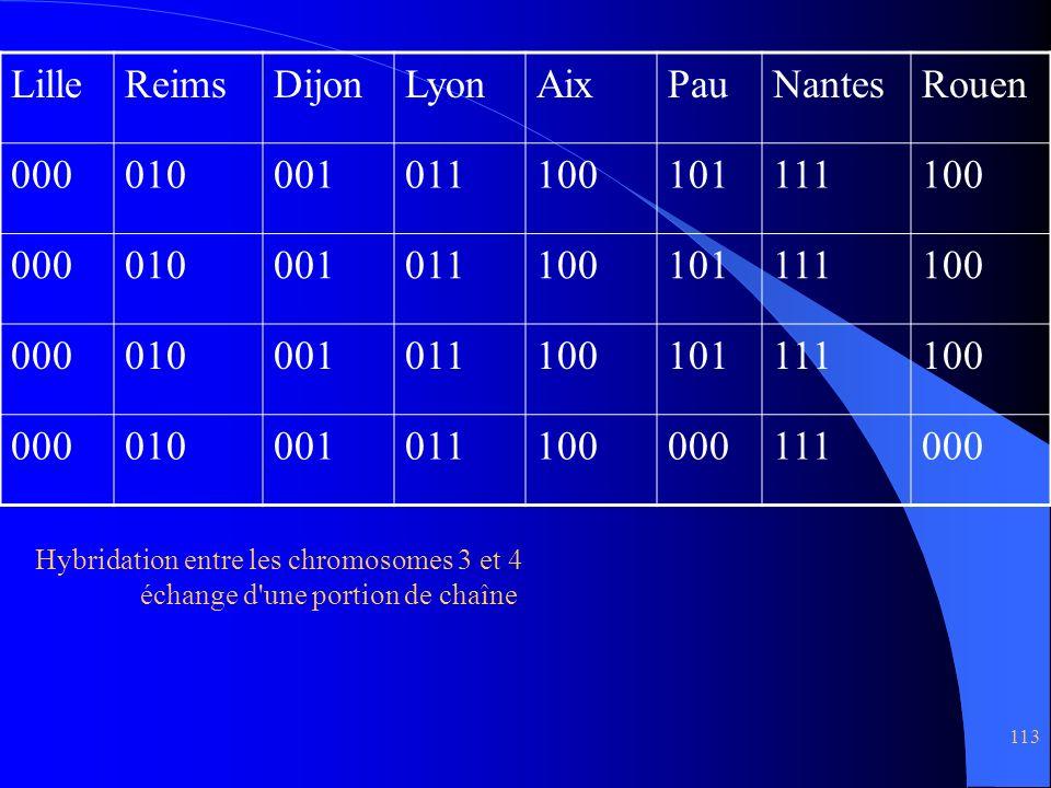 Lille Reims Dijon Lyon Aix Pau Nantes Rouen 000 010 001 011 100 101