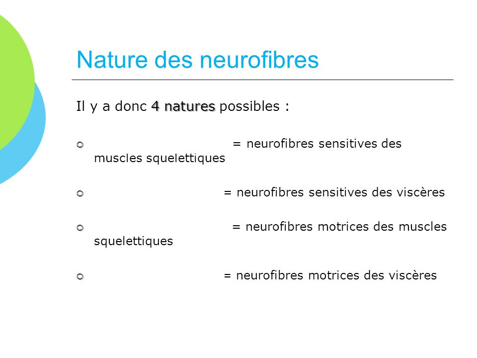Nature des neurofibres