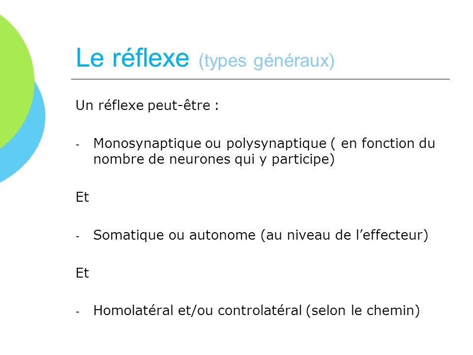 Le réflexe (types généraux)