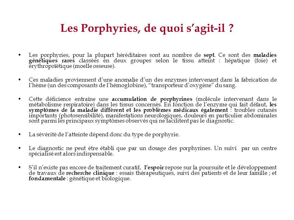 Les Porphyries, de quoi s'agit-il