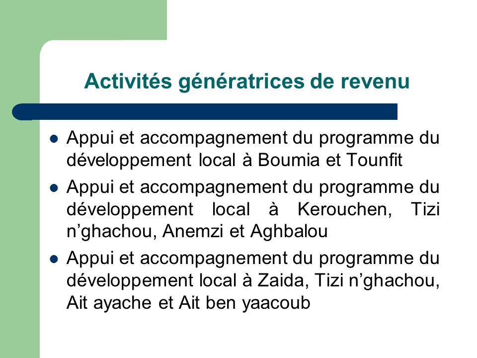 Activités génératrices de revenu