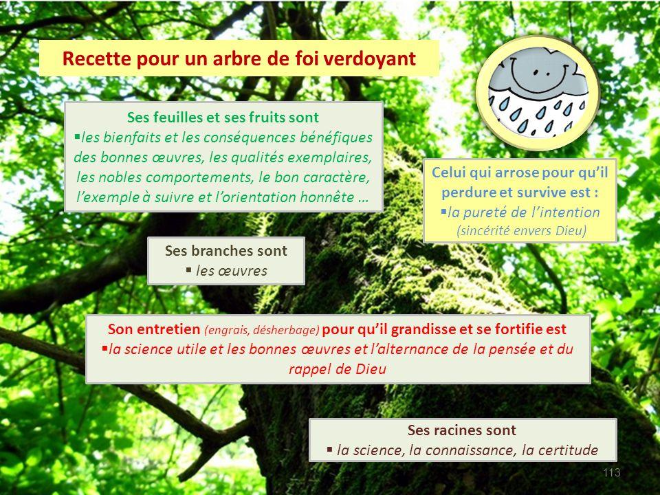 Recette pour un arbre de foi verdoyant