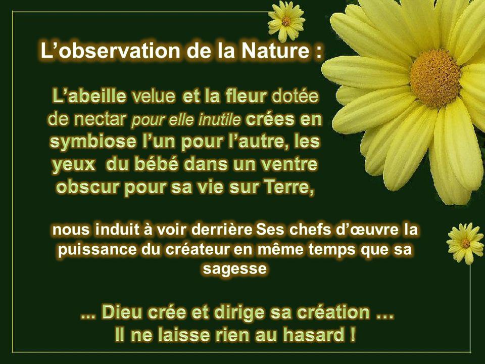 L'observation de la Nature :
