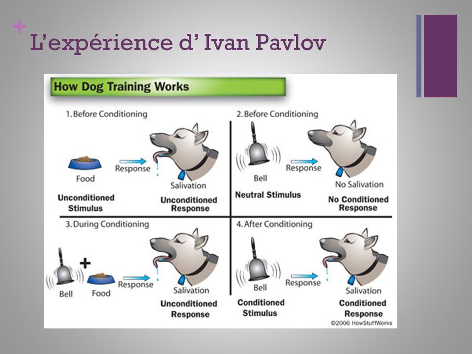L'expérience d' Ivan Pavlov