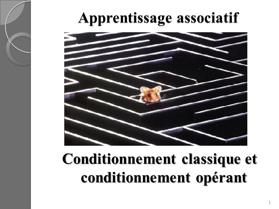 Apprentissage associatif