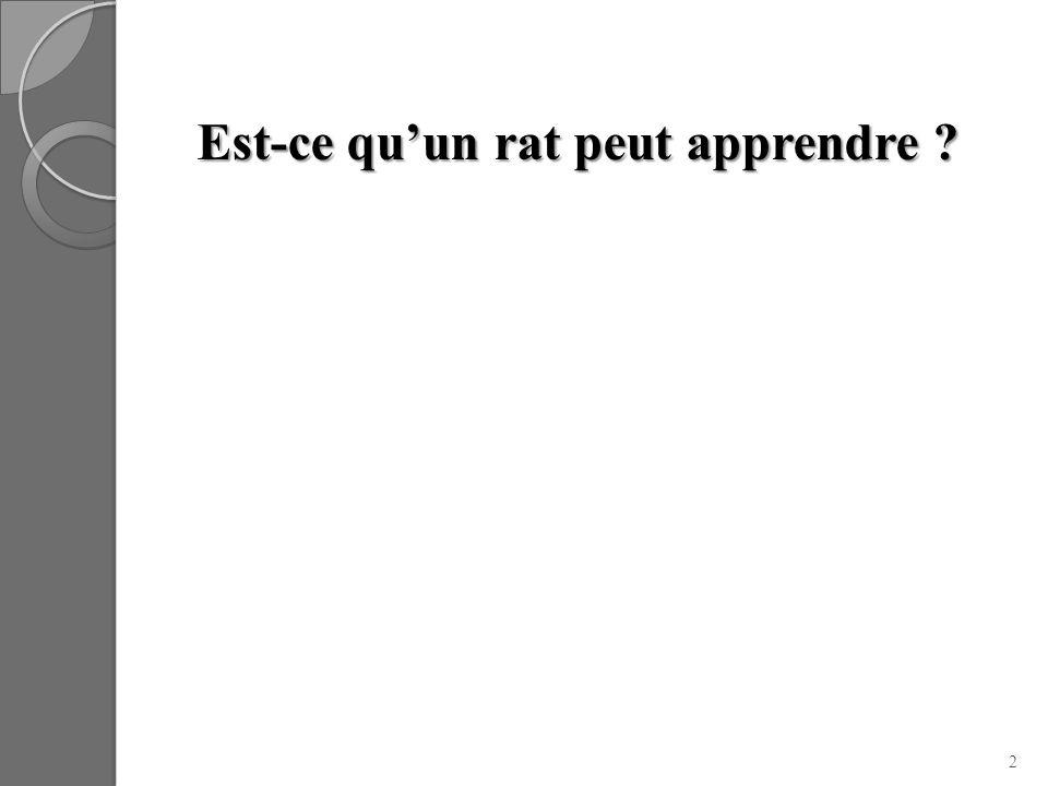 Est-ce qu'un rat peut apprendre