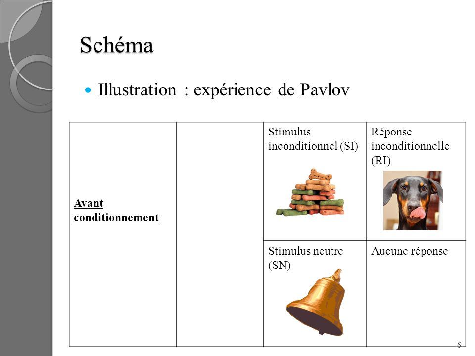 Schéma Illustration : expérience de Pavlov Avant conditionnement
