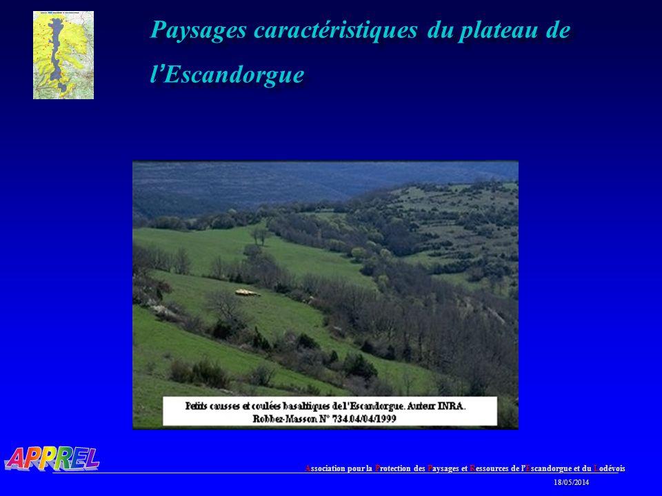 Paysages caractéristiques du plateau de l'Escandorgue