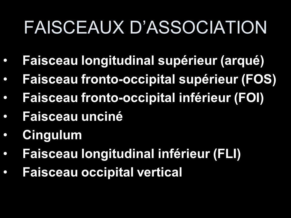 FAISCEAUX D'ASSOCIATION