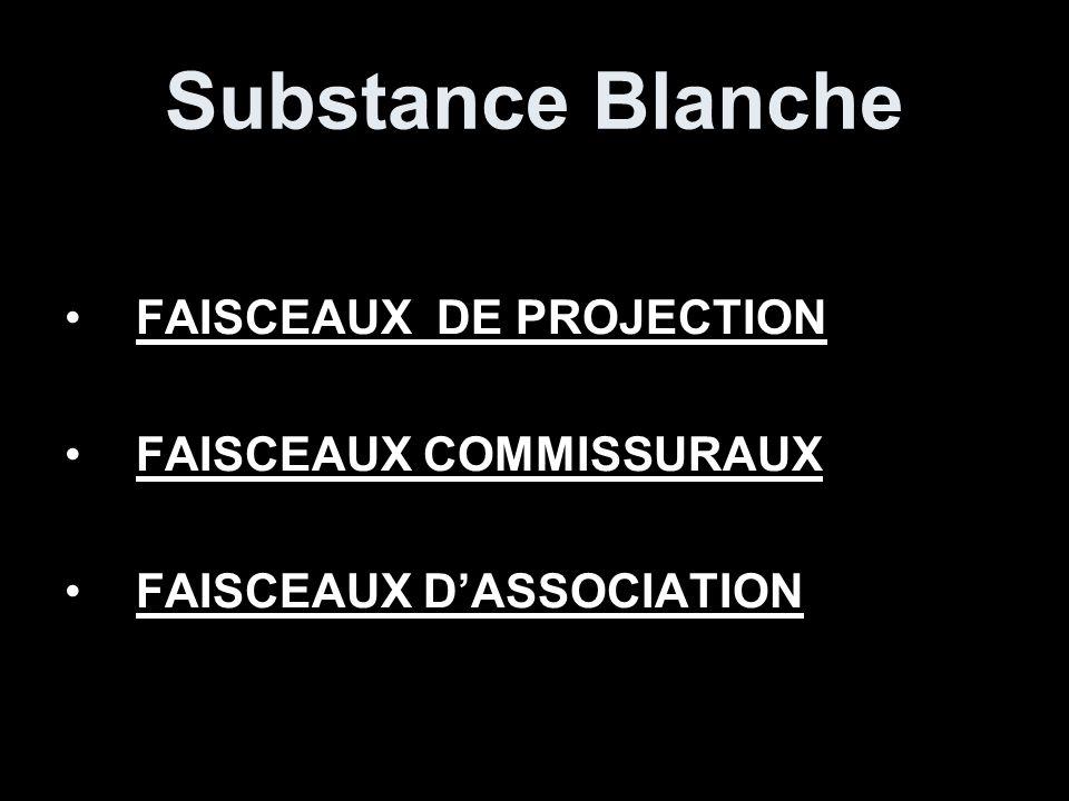 Substance Blanche FAISCEAUX DE PROJECTION FAISCEAUX COMMISSURAUX