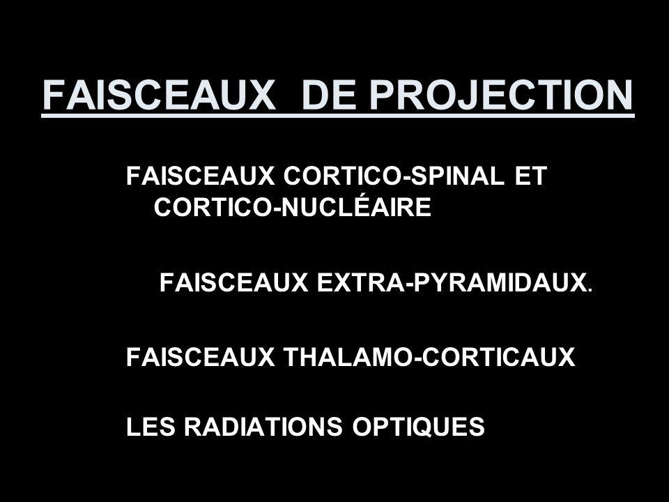 FAISCEAUX DE PROJECTION