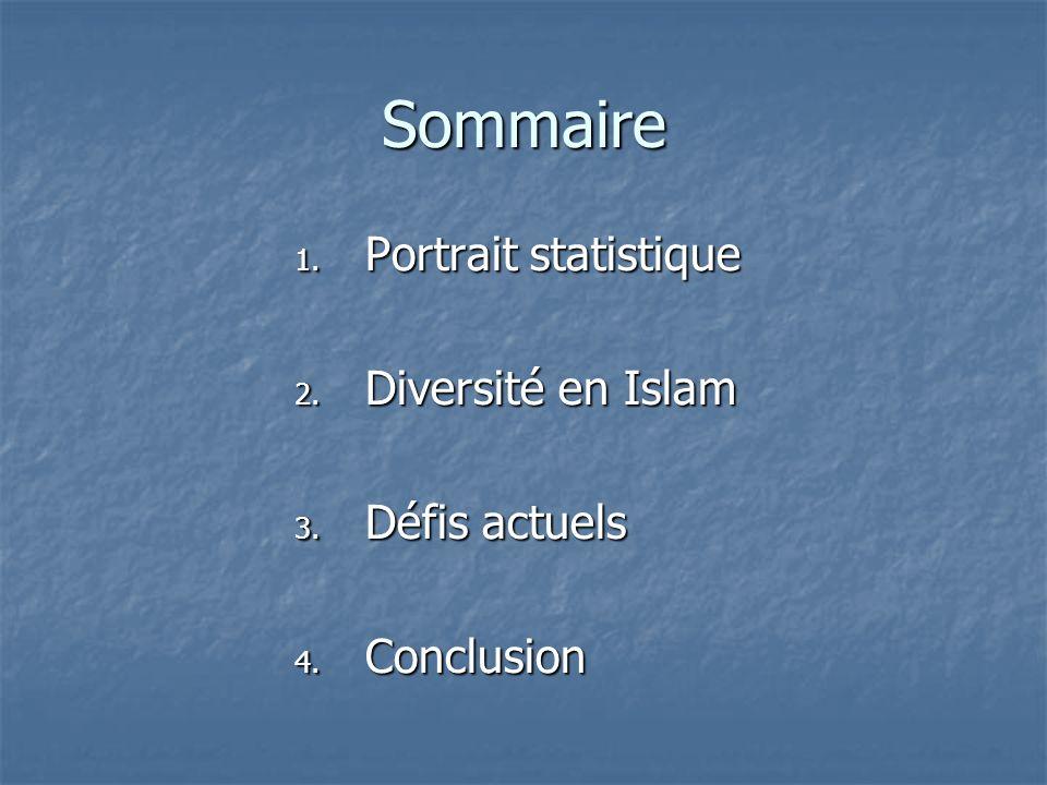 Sommaire Portrait statistique Diversité en Islam Défis actuels