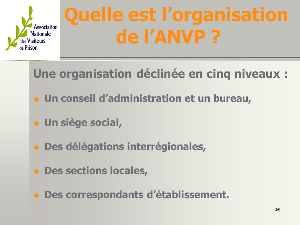 Quelle est l'organisation de l'ANVP