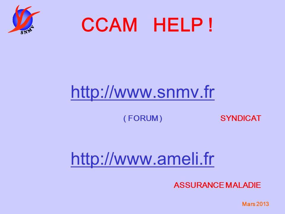 CCAM HELP ! http://www.snmv.fr http://www.ameli.fr ( FORUM ) SYNDICAT