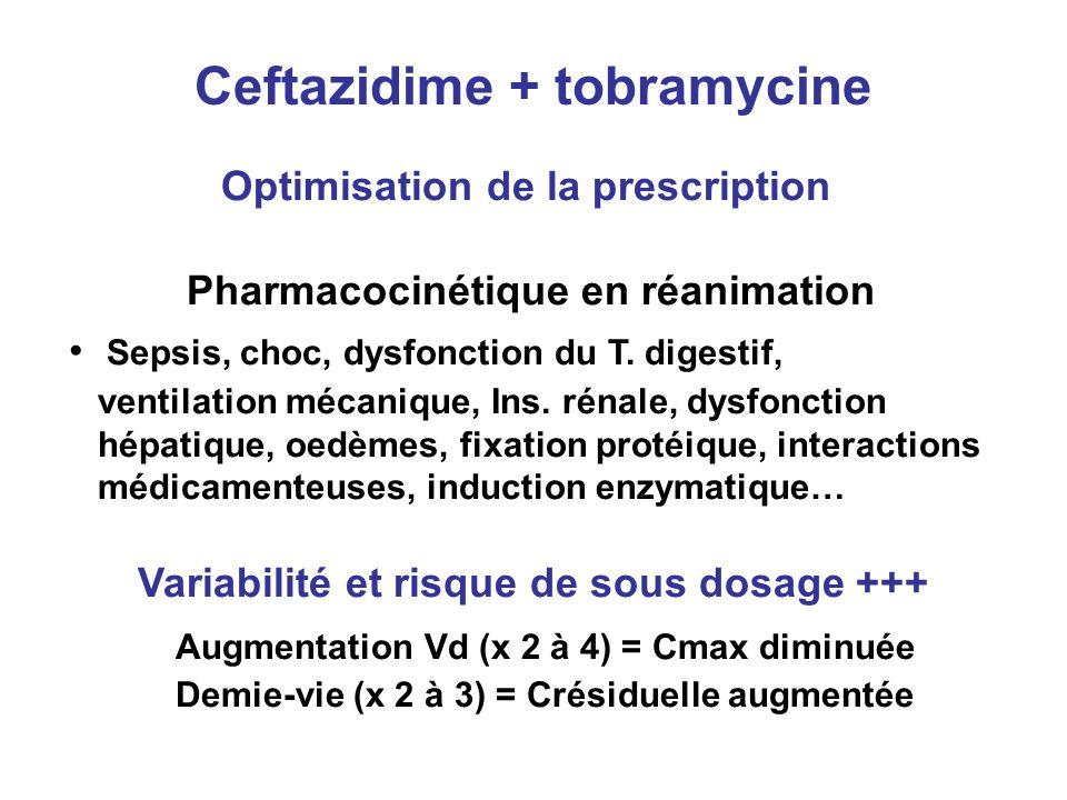 Ceftazidime + tobramycine