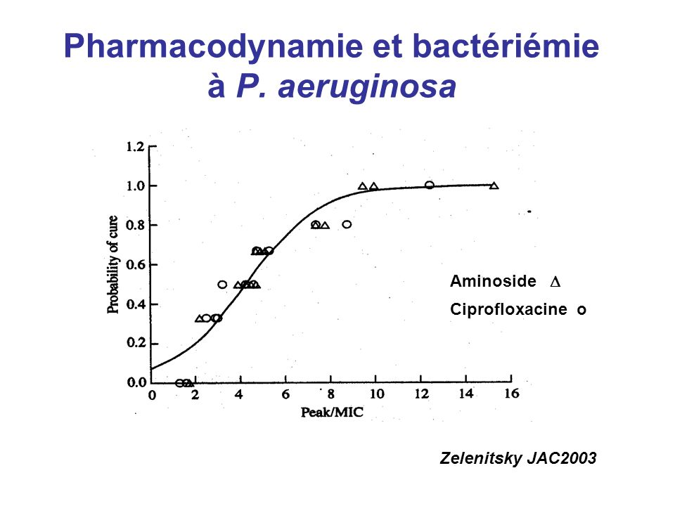 Pharmacodynamie et bactériémie à P. aeruginosa