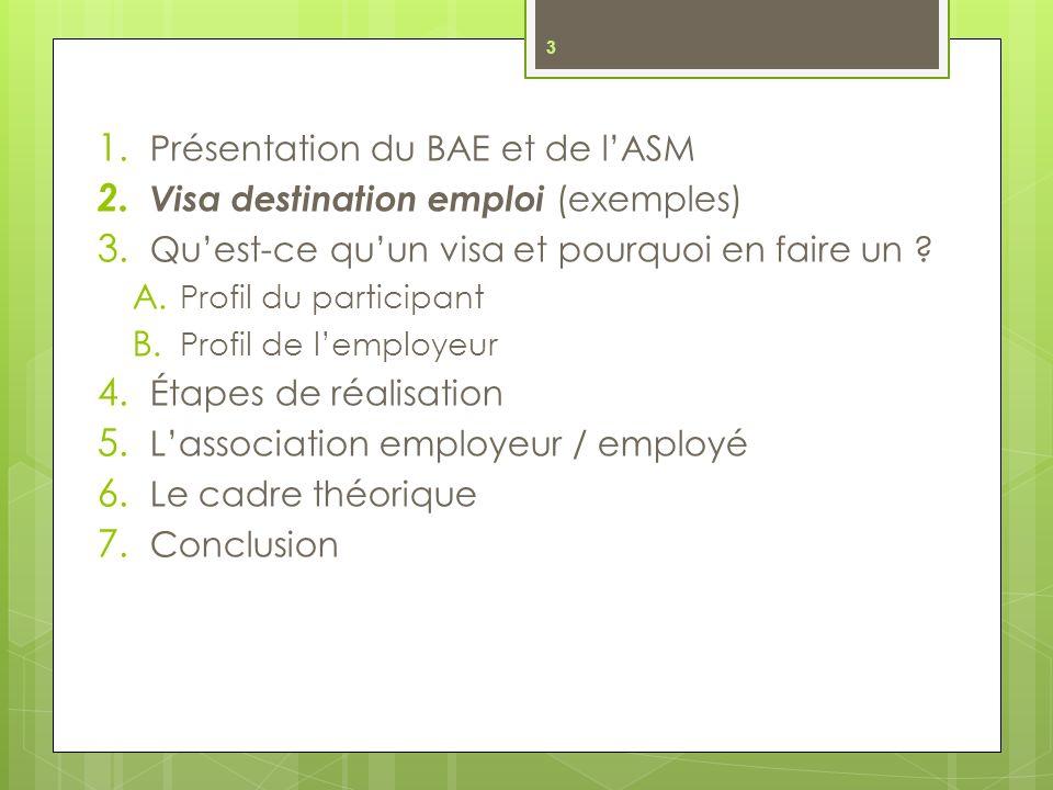 Présentation du BAE et de l'ASM Visa destination emploi (exemples)
