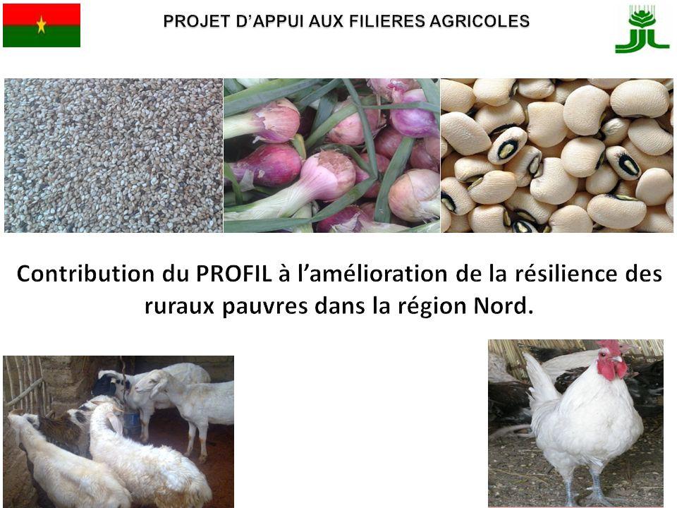 PROJET D'APPUI AUX FILIERES AGRICOLES
