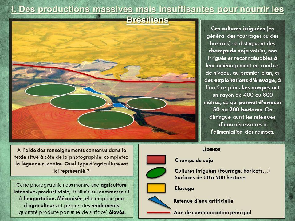 I. Des productions massives mais insuffisantes pour nourrir les Brésiliens