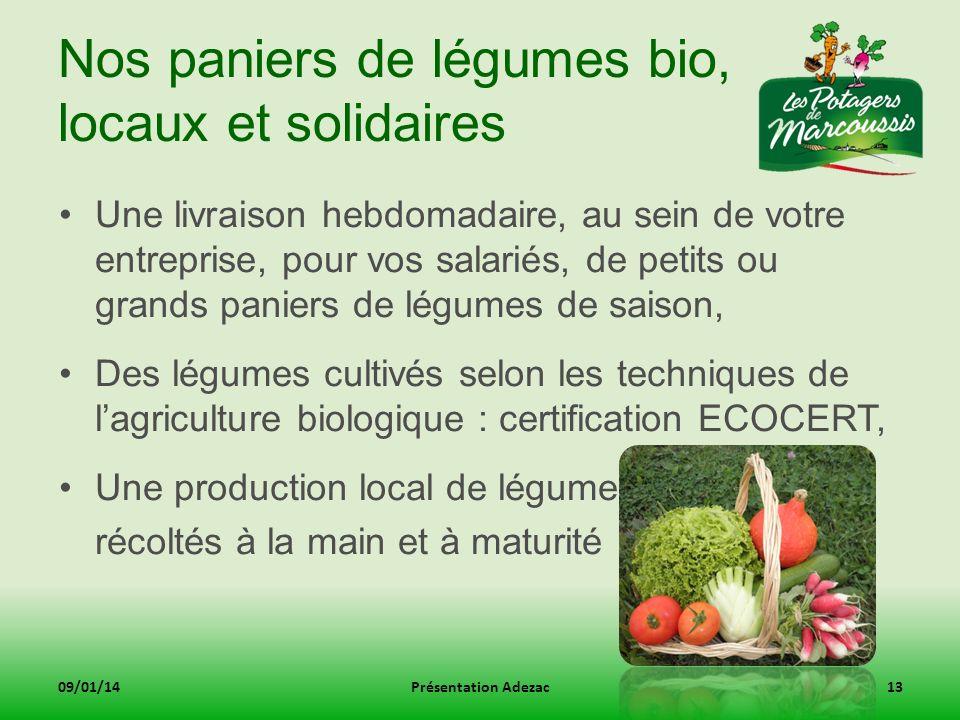 Nos paniers de légumes bio, locaux et solidaires