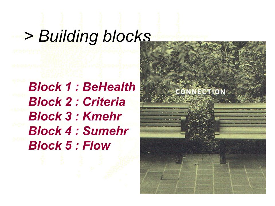 > Building blocks Block 1 : BeHealth Block 2 : Criteria Block 3 : Kmehr Block 4 : Sumehr Block 5 : Flow.