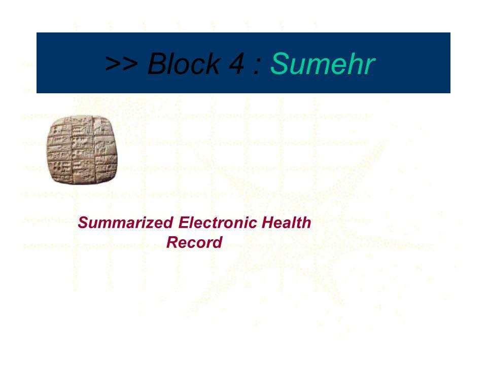 >> Block 4 : Sumehr