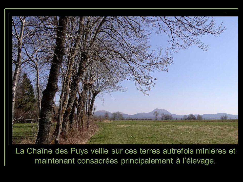 La Chaîne des Puys veille sur ces terres autrefois minières et maintenant consacrées principalement à l'élevage.