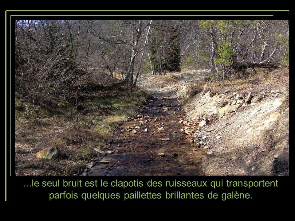 ...le seul bruit est le clapotis des ruisseaux qui transportent parfois quelques paillettes brillantes de galène.