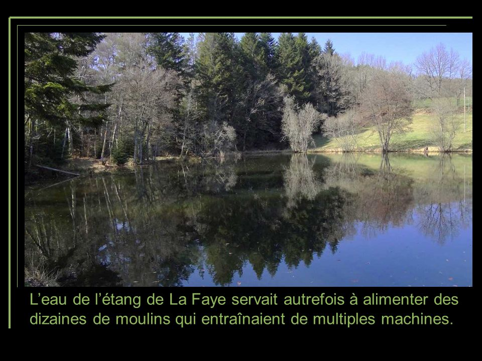L'eau de l'étang de La Faye servait autrefois à alimenter des dizaines de moulins qui entraînaient de multiples machines.