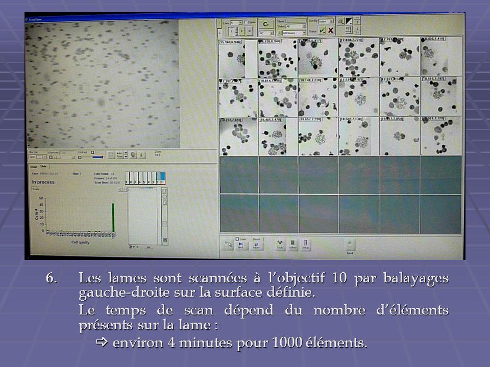 Les lames sont scannées à l'objectif 10 par balayages gauche-droite sur la surface définie.
